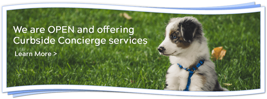 We are OPEN and offering Curbside Concierge services. Learn More.