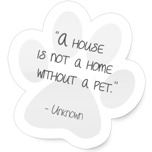 pet-quotes-paw-1